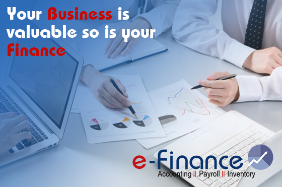 e-Accounting Online Accounting Management Software Nepal
